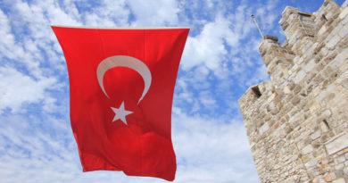 Электронная торговля в Турции