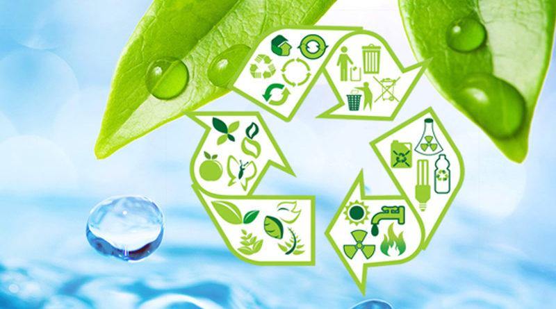 экологичные услуги