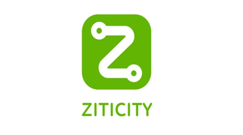 Ziticity, стартап из Литвы
