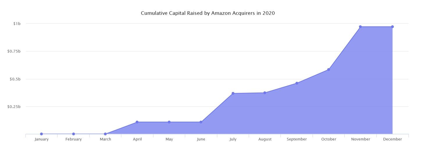 Marketplaces Year in Review 2020 5 Amazon Capital Raised