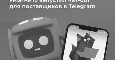 Магнит поставщики чат-бот_