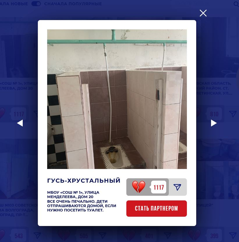Domestos школы туалеты 7